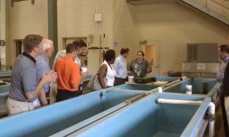 Auburn University Fisheries